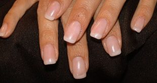 nature french manicure - natural nails straight french manicure ♥ #TeaTreeO ...