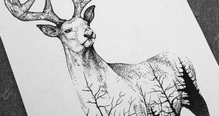 Tattoo Drawings Discover the best pictures of tattoo drawings There are p ...