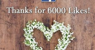 WOW My Facebook page has made 6,000 likes !!! Would love to make 1k on here