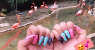 Check out my client's flamingo nails with flamingos in the background  - [ ] . -